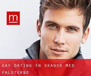 gay dating sweden
