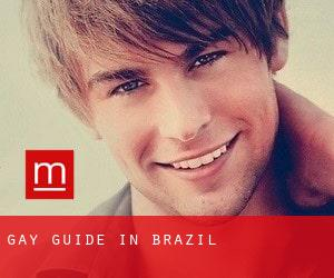 Gay guide in Brazil