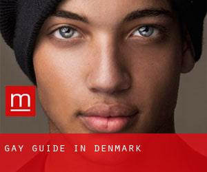 Gay guide in Denmark