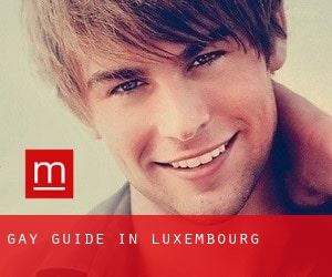 Gay guide in Luxembourg