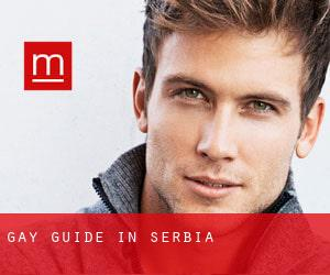 Gay guide in Serbia