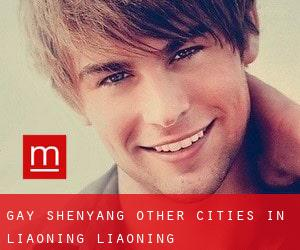 Gay Shenyang (Other Cities in Liaoning, Liaoning)